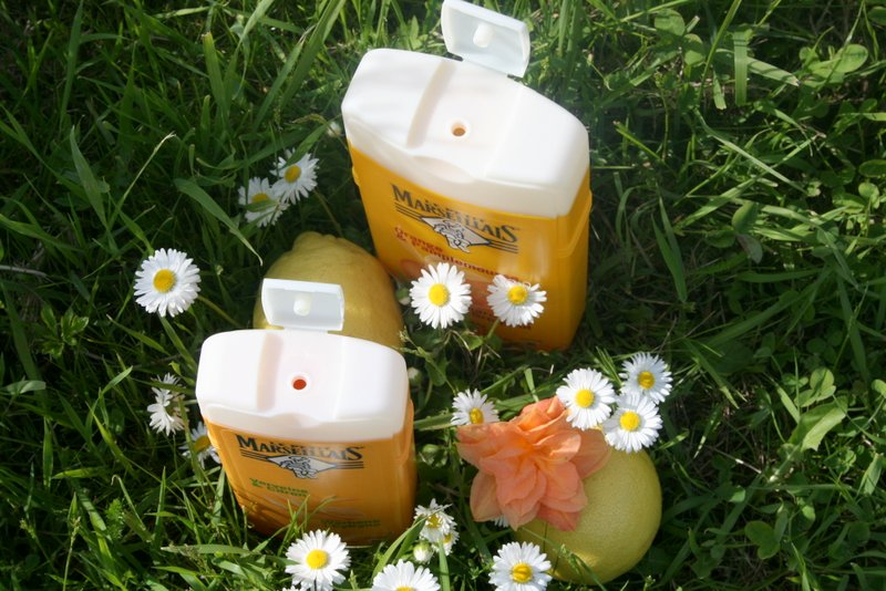 Pomarańcza i grejpfrut, werbena i cytryna LPM www.glowlifestyle.p.-007